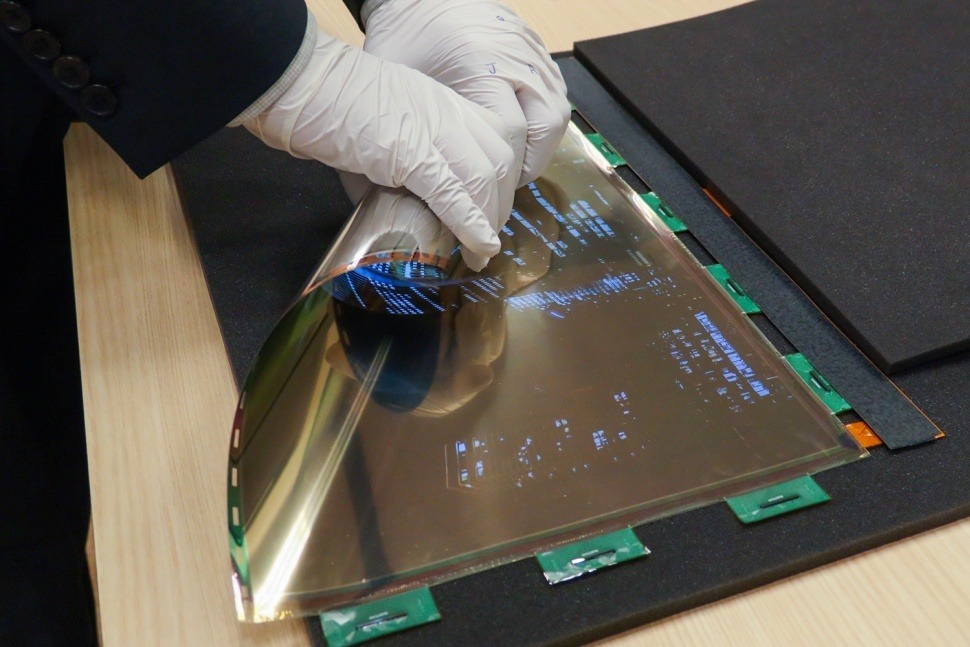 lgnrollable oled
