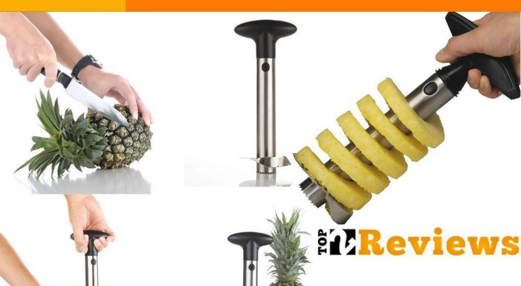 Best Pineapple Cutter Reviews